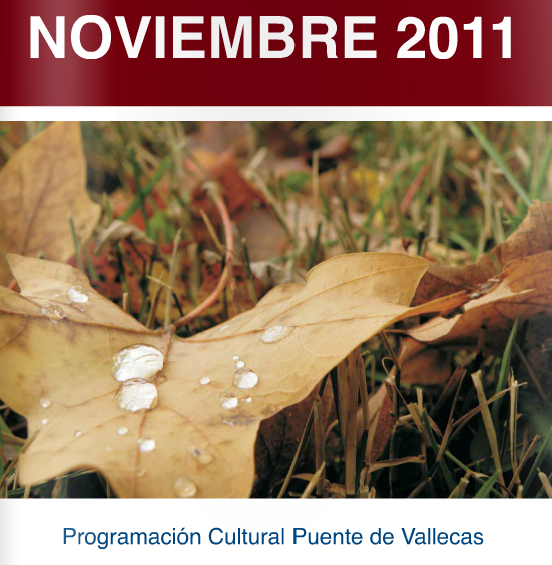Programación Noviembre 2012 distrito Puente Vallecas