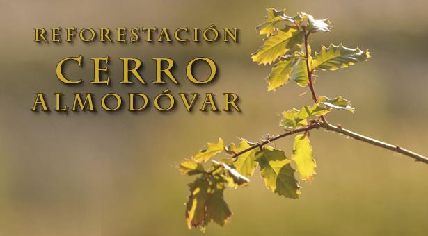 Proyecto de reforestación del Cerro Almodóvar de Santa Eugenia