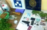 Detenidas dos personas que cultivaban marihuana en un ático de Puente de Vallecas