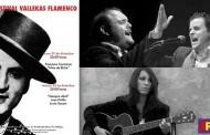 XII Festival Vallekas Flamenco