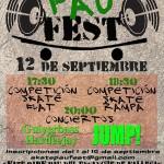 Cartel del Skate Pau Fest