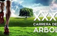 XXXI Carrera del Árbol y la 14ª Marcha por la Salud y la Integración en Vallecas