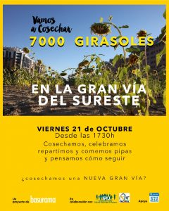 cosechandobarrio-girasoles-vallecas01