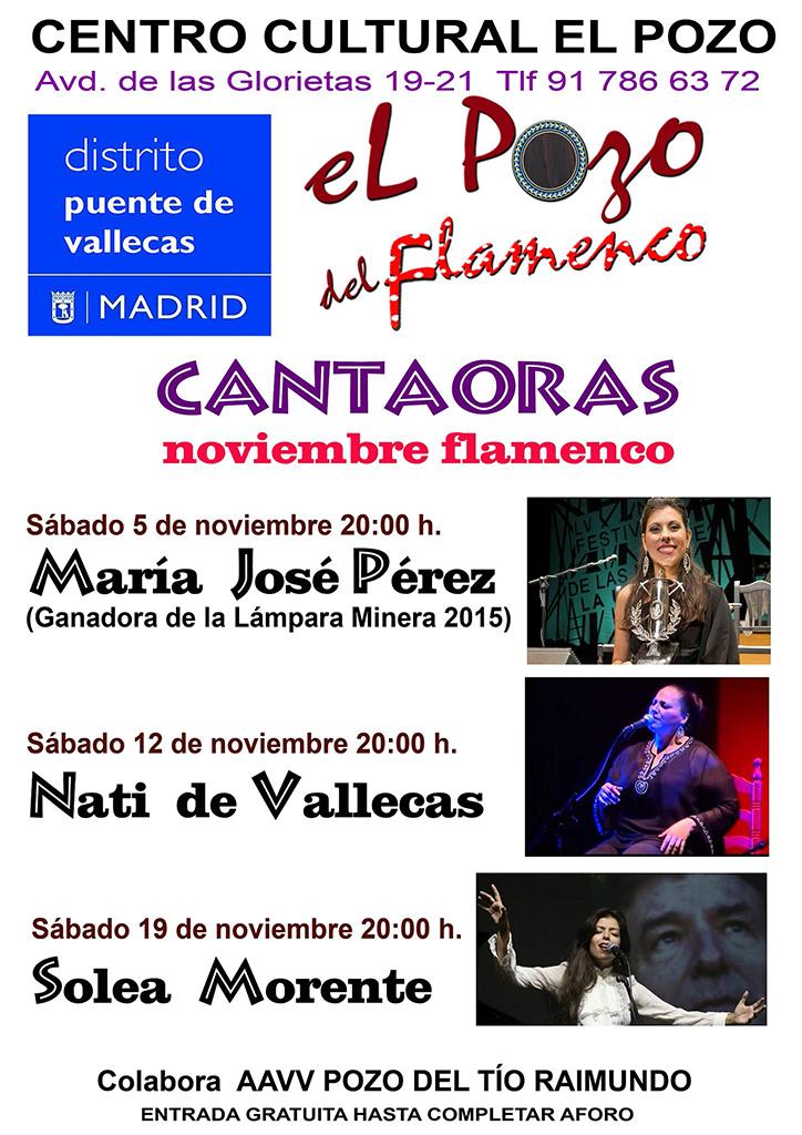 flamencoelpozo-nov2016_01